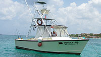 Mercenario - Full Size Fishing (Cozumel)