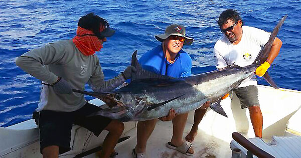 Cozumel fishing deep sea sportfishing for Fly fishing cozumel